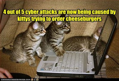 Image result for hacker lolcat